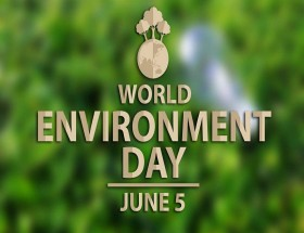 Environment Day date is 5 june photo hd