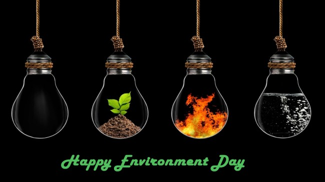 Happy Environment Day full hd wide wallpaper background